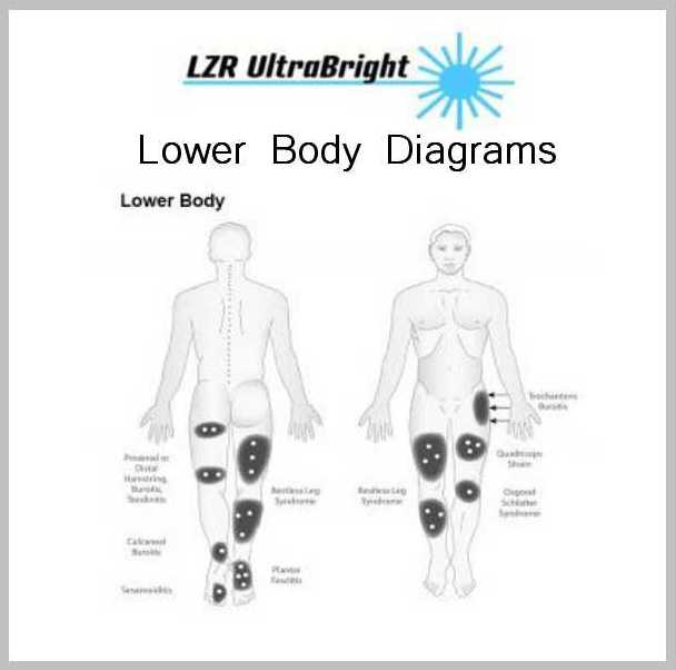 About Diagrams 2 LOWER BODY DIAGRAMS